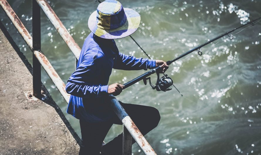 Why you should go fishing with your family in your free time