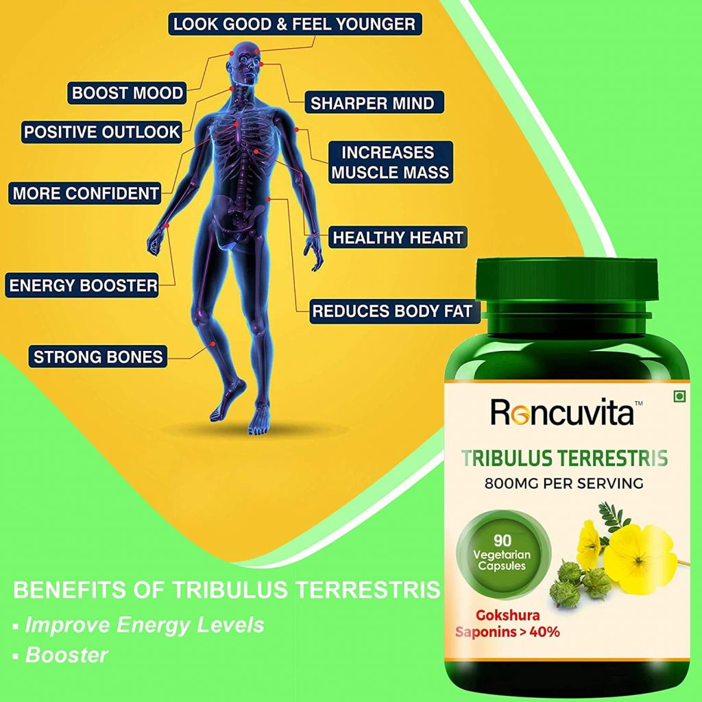 Use Tribulus Terrestris for Muscle Building