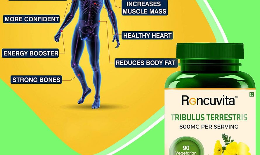 How to Use Tribulus Terrestris for Muscle Building