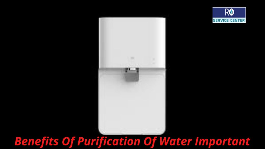 Purification Of Water Important